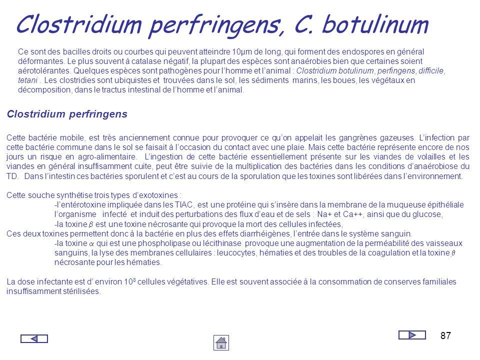 87 Clostridium perfringens, C. botulinum Ce sont des bacilles droits ou courbes qui peuvent atteindre 10µm de long, qui forment des endospores en géné
