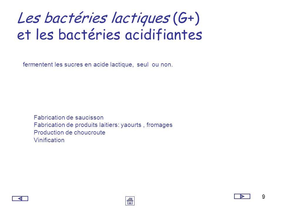 9 Les bactéries lactiques (G+) et les bactéries acidifiantes fermentent les sucres en acide lactique, seul ou non. Fabrication de saucisson Fabricatio