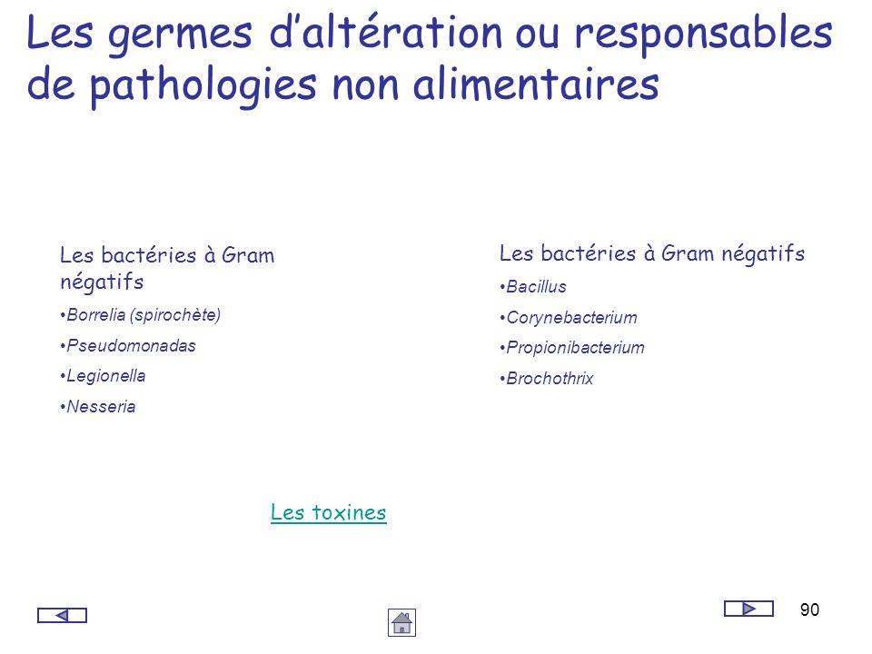 90 Les germes daltération ou responsables de pathologies non alimentaires Les bactéries à Gram négatifs Borrelia (spirochète) Pseudomonadas Legionella