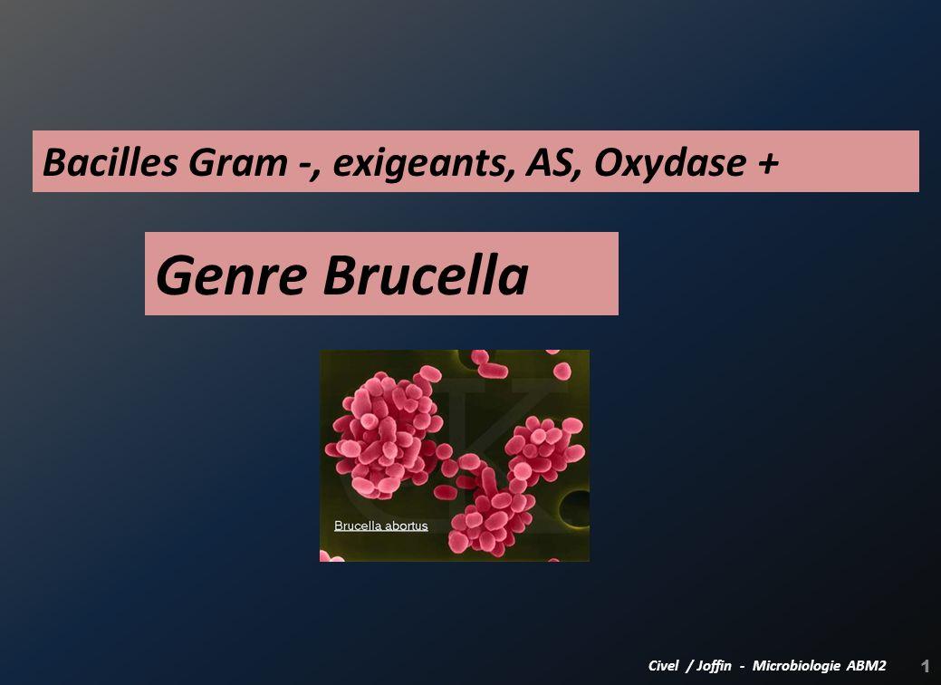 1 Genre Brucella Civel / Joffin - Microbiologie ABM2 Bacilles Gram -, exigeants, AS, Oxydase +