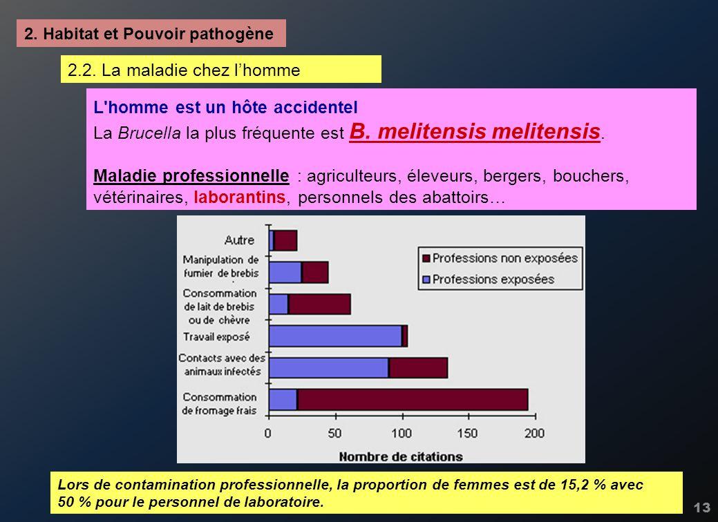 13 2. Habitat et Pouvoir pathogène L'homme est un hôte accidentel La Brucella la plus fréquente est B. melitensis melitensis. Maladie professionnelle