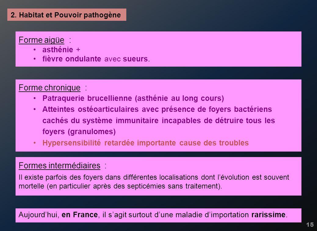 15 2. Habitat et Pouvoir pathogène Forme aigüe : asthénie + fièvre ondulante avec sueurs. Aujourdhui, en France, il sagit surtout dune maladie dimport