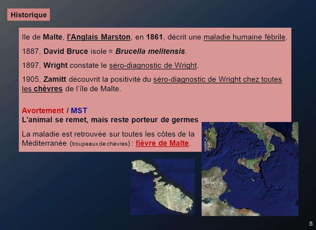 5 Ile de Malte, l'Anglais Marston, en 1861, décrit une maladie humaine fébrile. 1887, David Bruce isole = Brucella melitensis. 1897, Wright constate l