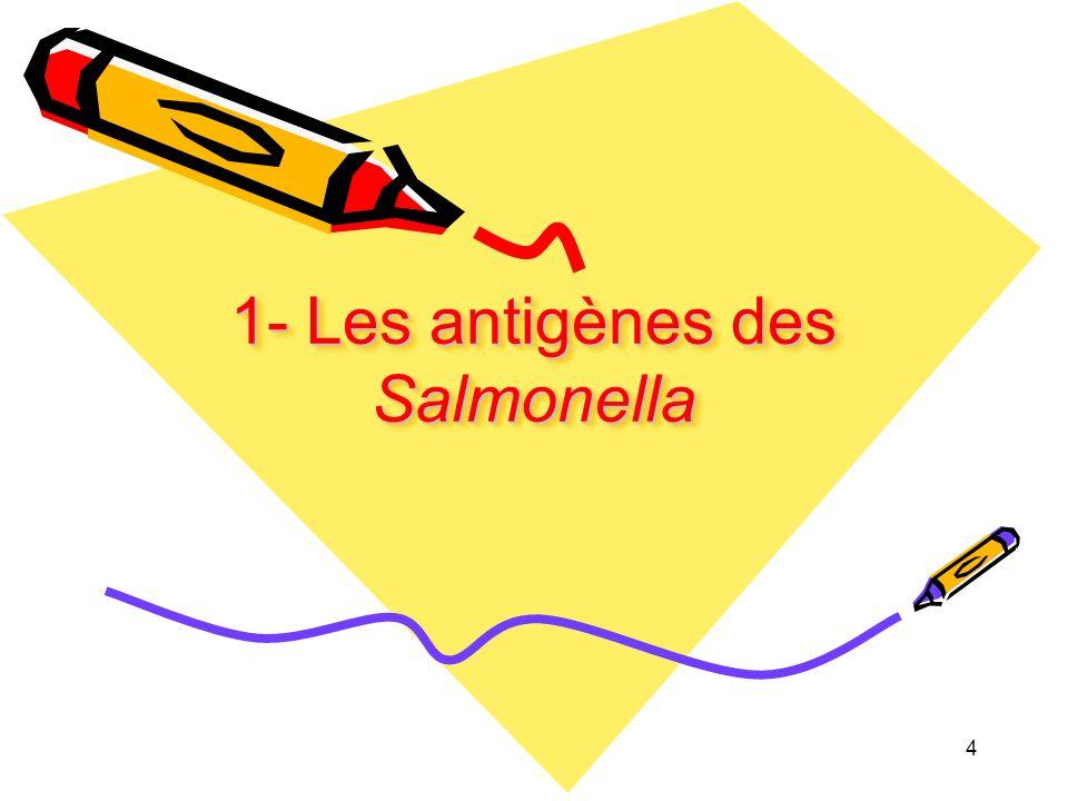 1- Les antigènes des Salmonella 4