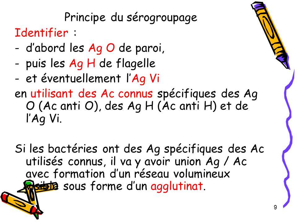 Les étapes du sérogroupage (suite) Etapes suivantes : identification du (ou des) groupe(s) O 3- Identifier les groupes auxquels la bactérie appartient grâce à des sérums mélanges dAc anti-O –OMA = agglutinines groupes A, B, D, E, L (contient Ag 1, 2, 3, 4, 5, 9, 10, 12, 19, 21, et 46) –OMB = agglutinines groupes C, F, G, H (contient Ag 6, 7, 8, 11, 13, 14, 20, 22, 23, 24) Remarque : si pas dagglutination avec OMA et OMB, il faudra recherher si la souche a lAg Vi en utilisant des AC anti Vi 4- Préciser lidentification des Ag O en utilisant des sérums Anti O (sérums monovalents) en les choisissant par ordre de fréquence de groupe.