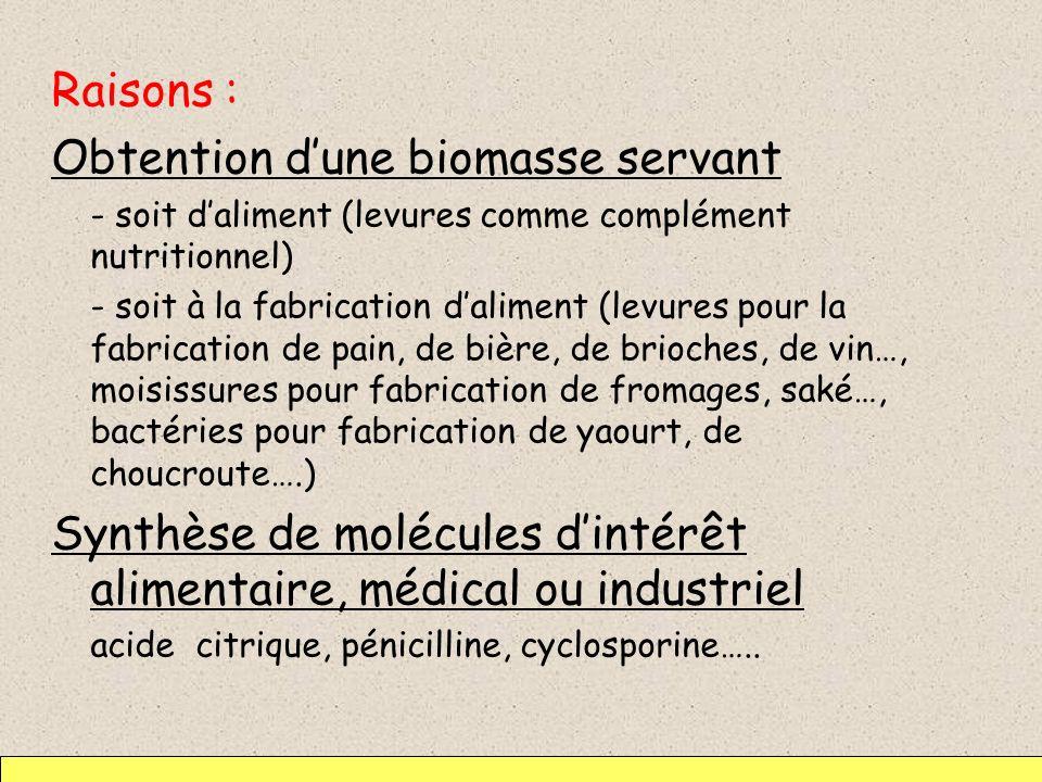 Conclusion : intérêt des fermentations lors de la fabrication dun aliment Fermentation lactique : acidification du milieu empêchant ainsi la multiplication dautres microorganismes (conservateur).