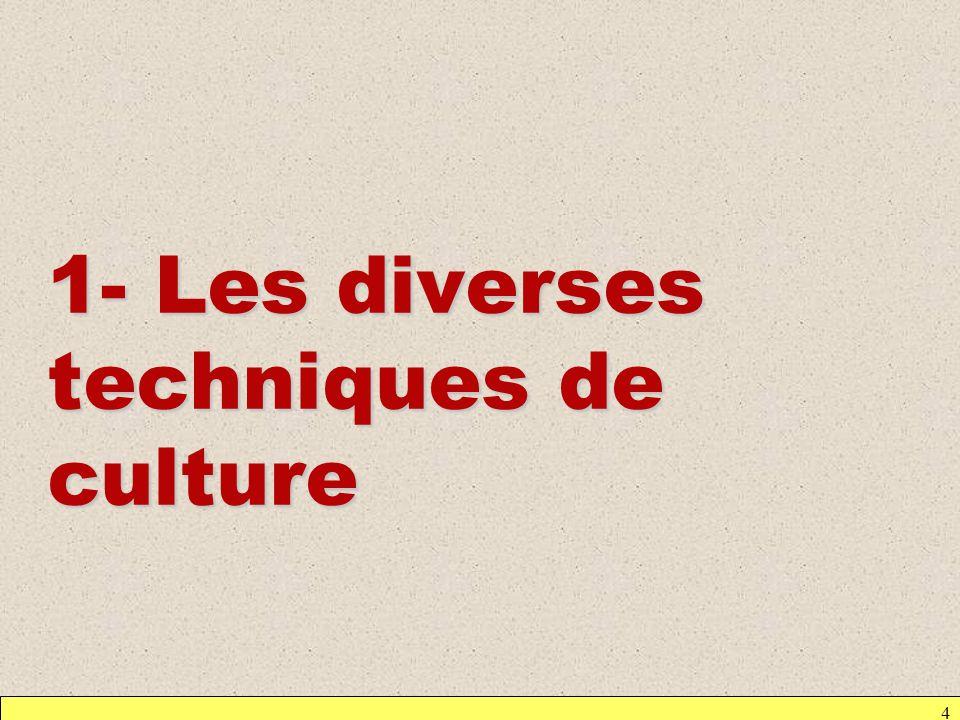 Deux grandes techniques de culture : - Culture en discontinu = culture en batch - Culture en continu = culture en milieu renouvelé Remarque : existence dun autre type de culture avec immobilisation des microorganismes 5