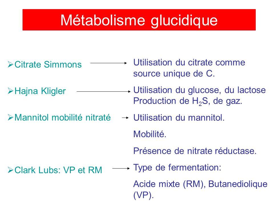 Métabolisme glucidique Citrate Simmons Hajna Kligler Mannitol mobilité nitraté Clark Lubs: VP et RM Utilisation du citrate comme source unique de C.