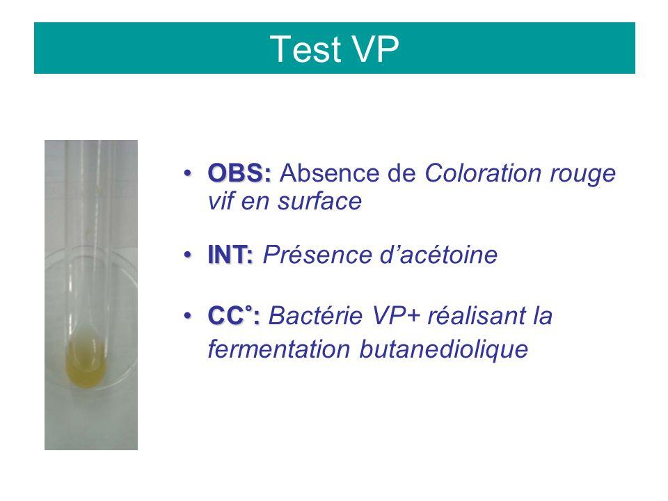 Test VP OBS:OBS: Absence de Coloration rouge vif en surface INT:INT: Présence dacétoine CC°:CC°: Bactérie VP+ réalisant la fermentation butanediolique