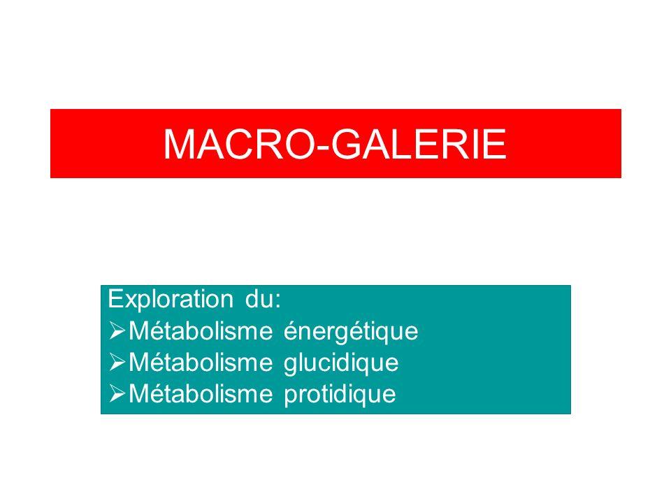 MACRO-GALERIE Exploration du: Métabolisme énergétique Métabolisme glucidique Métabolisme protidique