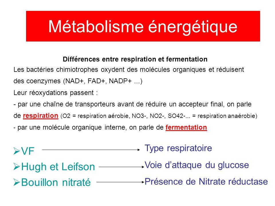 Métabolisme énergétique VF Hugh et Leifson Bouillon nitraté Type respiratoire Voie dattaque du glucose Présence de Nitrate réductase Différences entre respiration et fermentation Les bactéries chimiotrophes oxydent des molécules organiques et réduisent des coenzymes (NAD+, FAD+, NADP+...) Leur réoxydations passent : - par une chaîne de transporteurs avant de réduire un accepteur final, on parle de respiration (O2 = respiration aérobie, NO3-, NO2-, SO42-...
