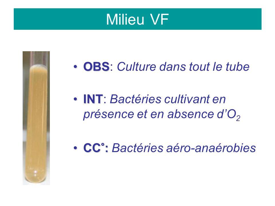 Milieu VF OBSOBS: Culture dans tout le tube INTINT: Bactéries cultivant en présence et en absence dO 2 CC°:CC°: Bactéries aéro-anaérobies