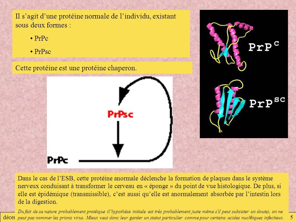 décembre 2007Virologie5 Il sagit dune protéine normale de lindividu, existant sous deux formes : PrPc PrPsc Cette protéine est une protéine chaperon.