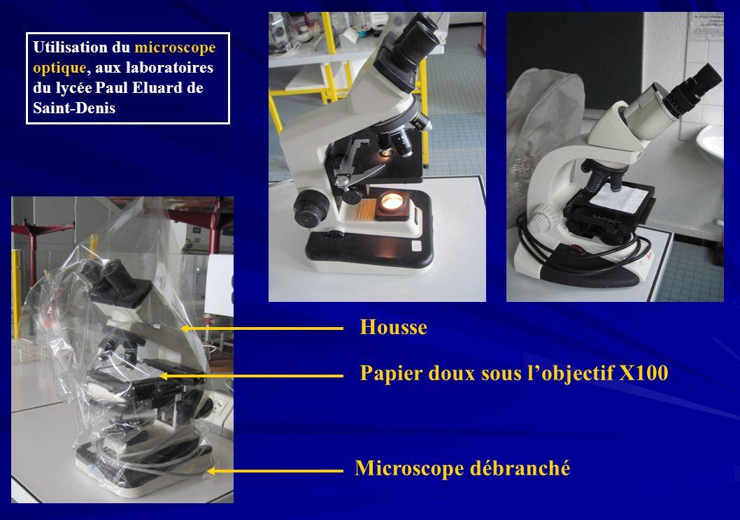 Housse Papier doux sous lobjectif X100 Microscope débranché Utilisation du microscope optique, aux laboratoires du lycée Paul Eluard de Saint-Denis