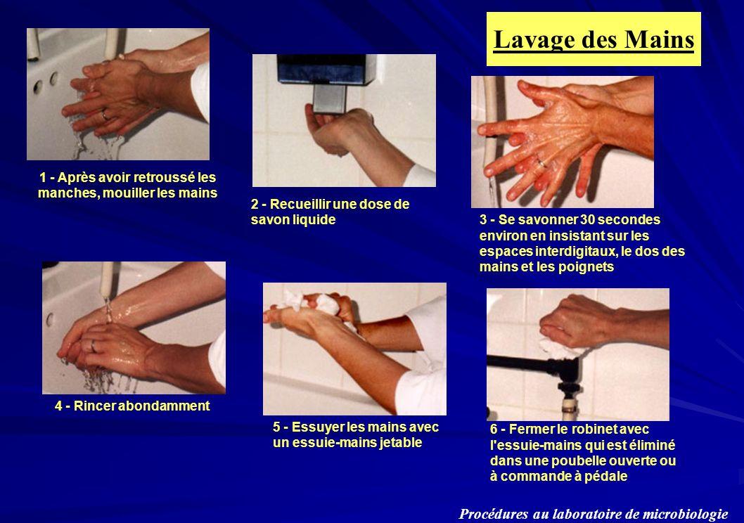 Procédures au laboratoire de microbiologie Lavage des Mains 2 - Recueillir une dose de savon liquide 3 - Se savonner 30 secondes environ en insistant