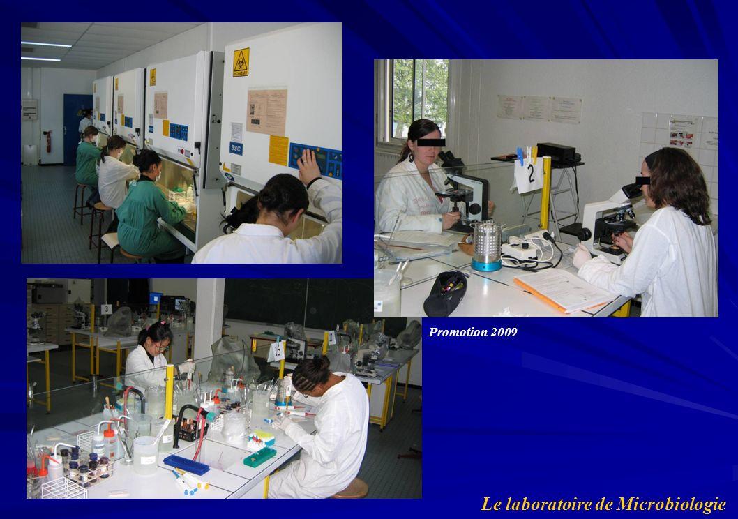 Le laboratoire de Microbiologie Promotion 2009