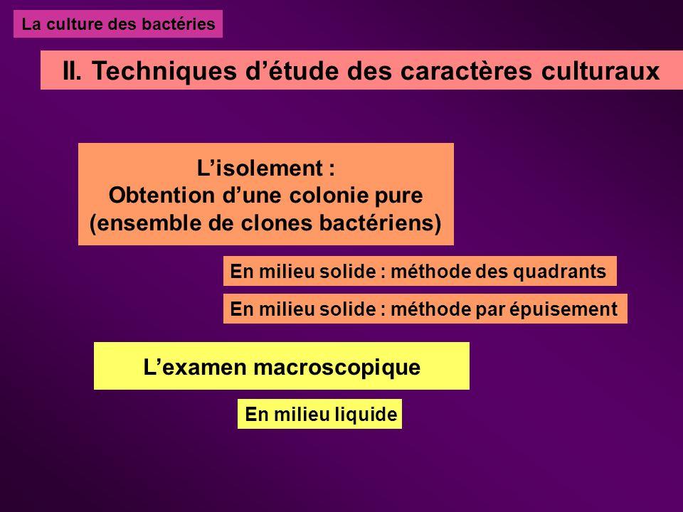 La culture des bactéries II. Techniques détude des caractères culturaux Lisolement : Obtention dune colonie pure (ensemble de clones bactériens) En mi