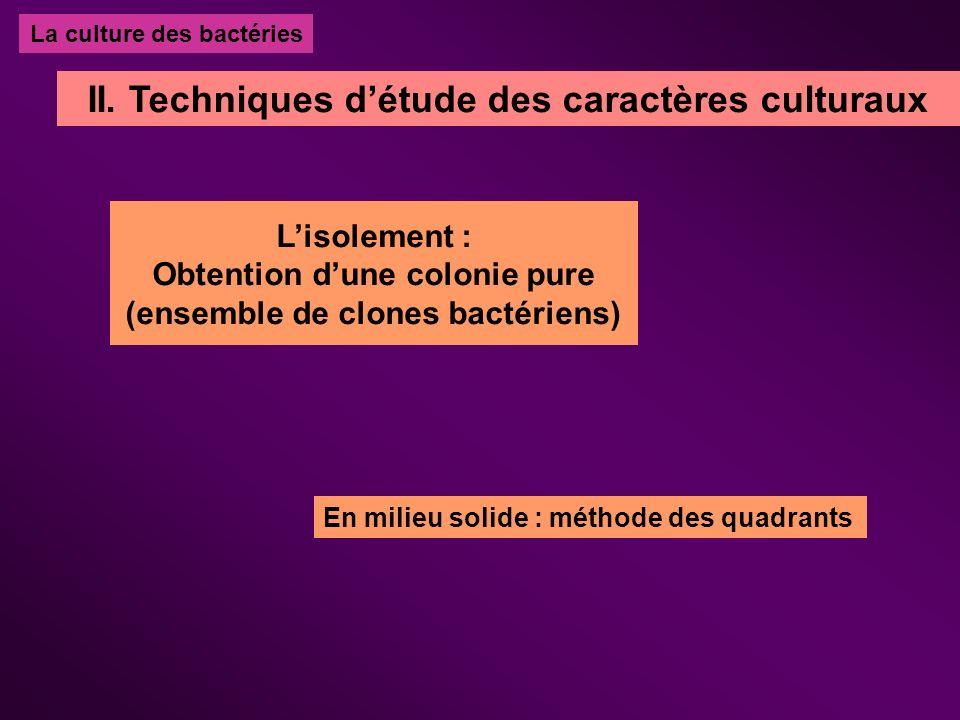 Lexamen macroscopique : En milieu liquide SURFACE : Voile, Anneau CULOT : Couleur, adhérence Importance du trouble + (bulles .