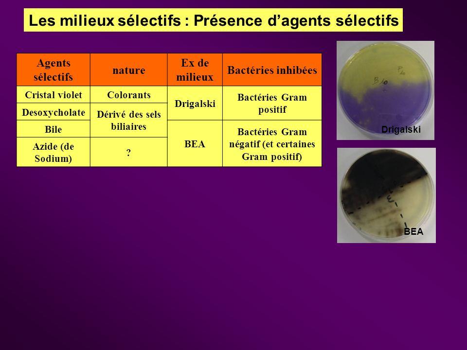 Les milieux sélectifs : Présence dagents sélectifs Agents sélectifs nature Ex de milieux Bactéries inhibées Cristal violetColorants Drigalski Bactérie