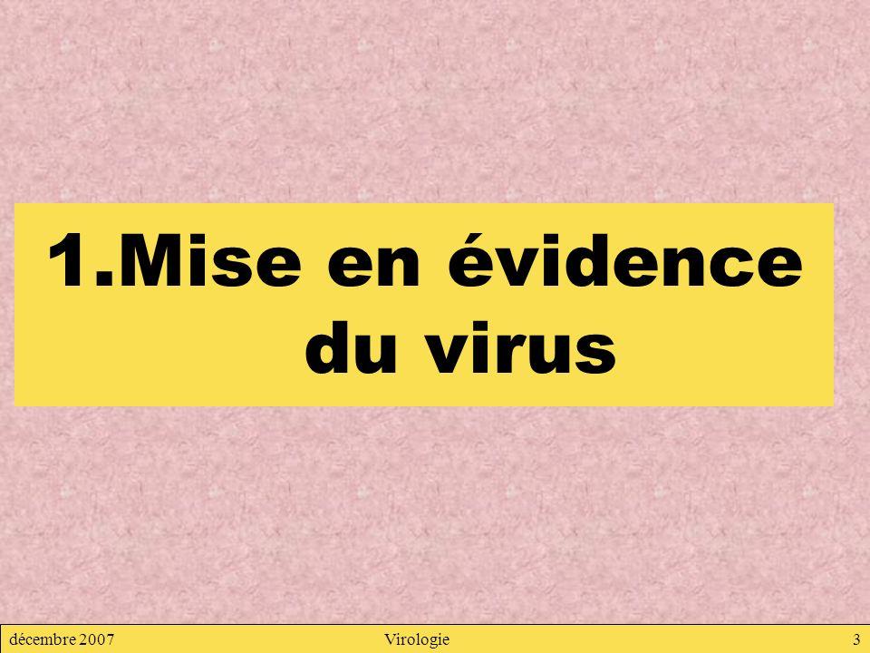 décembre 2007Virologie3 1.Mise en évidence du virus