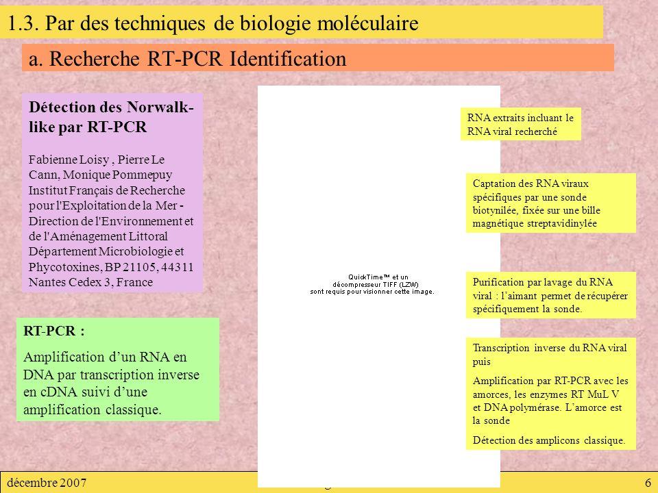 décembre 2007Virologie6 a. Recherche RT-PCR Identification Détection des Norwalk- like par RT-PCR Fabienne Loisy, Pierre Le Cann, Monique Pommepuy Ins
