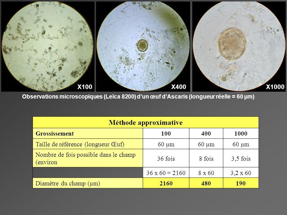X100X400X1000 Observations microscopiques (Leïca 8200) dun œuf dAscaris (longueur réelle = 60 µm) Méthode approximative Grossissement1004001000 Taille