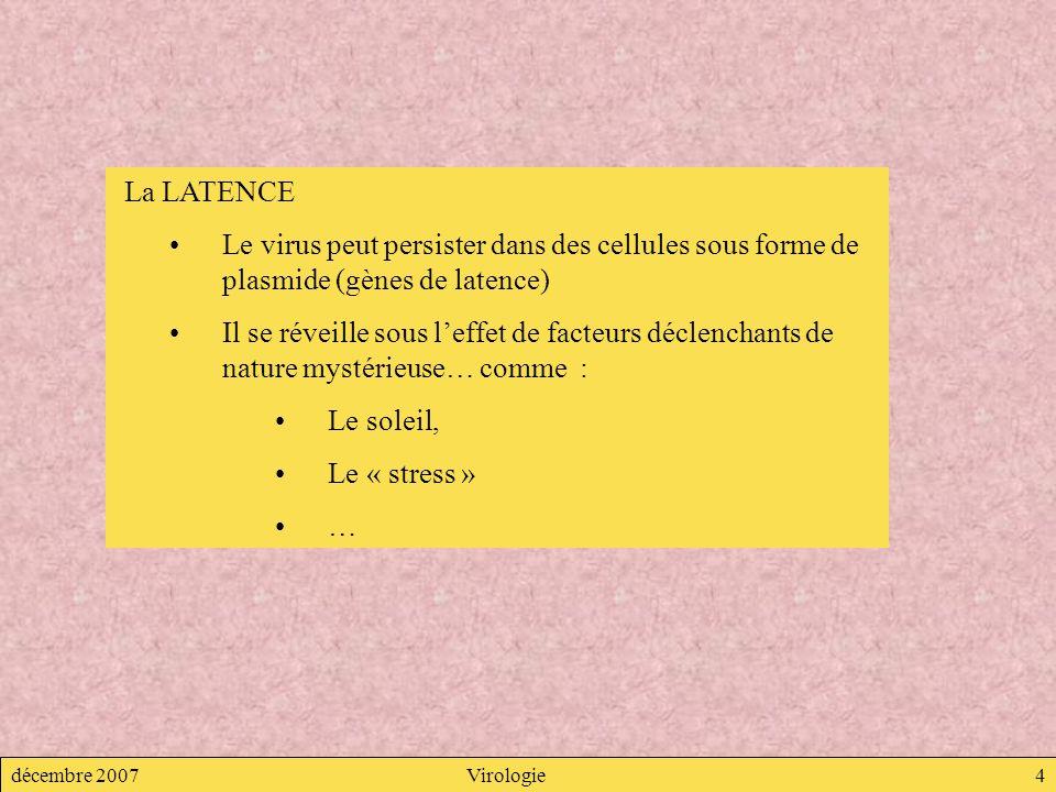 décembre 2007Virologie4 La LATENCE Le virus peut persister dans des cellules sous forme de plasmide (gènes de latence) Il se réveille sous leffet de f