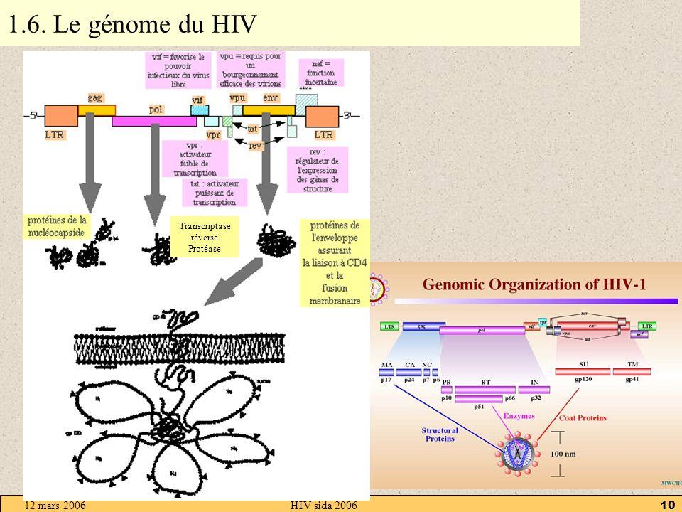 12 mars 2006HIV sida 20069 1.5. Les protéines de surface