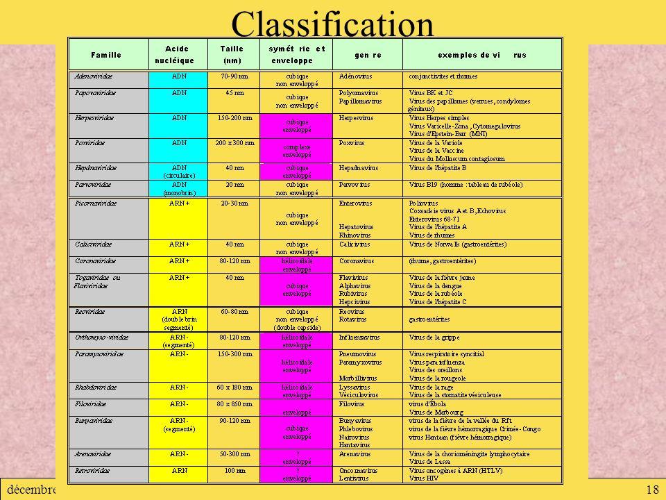 décembre 2007Virologie18 Classification