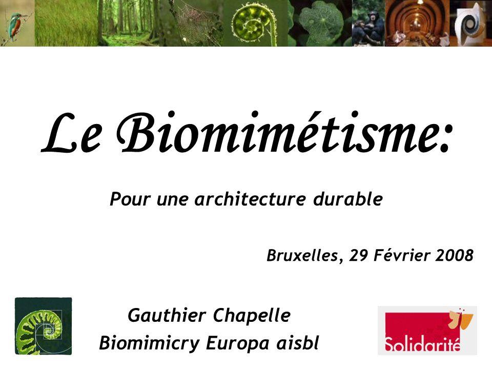 Le Biomimétisme: Pour une architecture durable Gauthier Chapelle Biomimicry Europa aisbl Bruxelles, 29 Février 2008