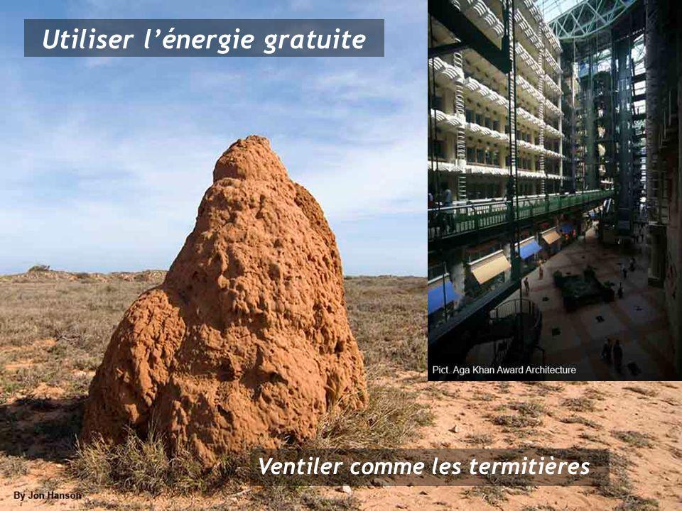Ventiler comme les termitières Utiliser lénergie gratuite