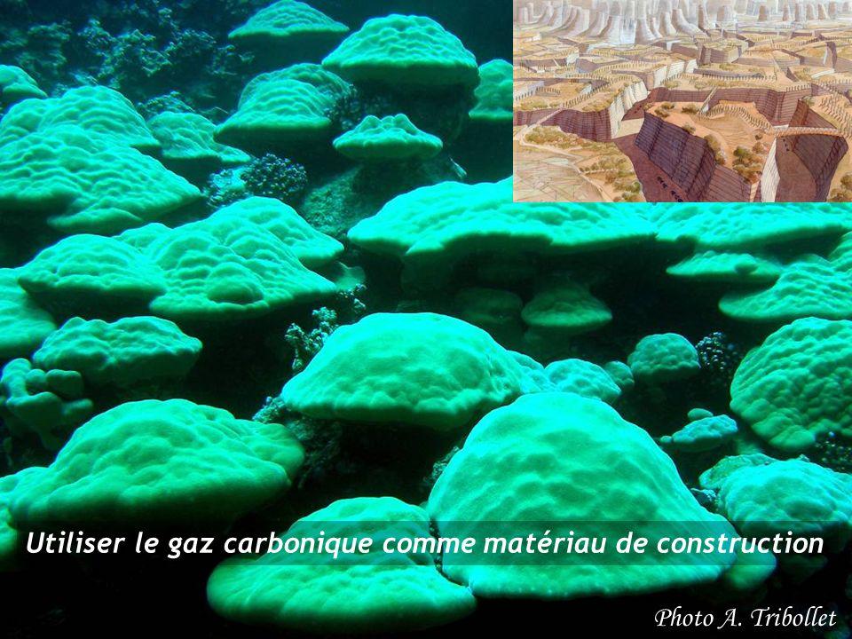 Utiliser le gaz carbonique comme matériau de construction Photo A. Tribollet