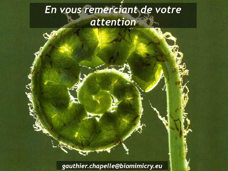 gauthier.chapelle@biomimicry.eu En vous remerciant de votre attention