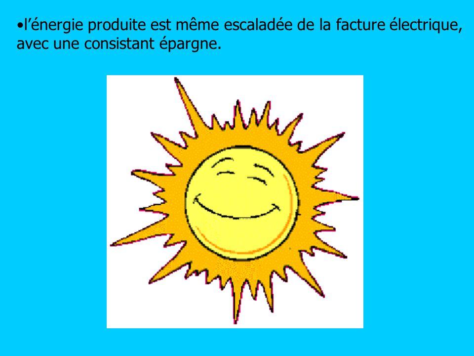 lénergie produite est même escaladée de la facture électrique, avec une consistant épargne.