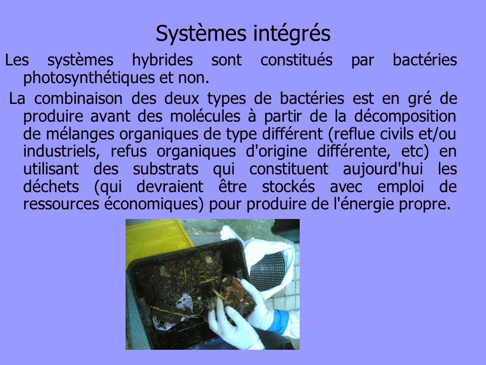 Systèmes intégrés Les systèmes hybrides sont constitués par bactéries photosynthétiques et non. La combinaison des deux types de bactéries est en gré