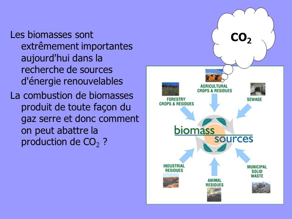 Les biomasses sont extrêmement importantes aujourd'hui dans la recherche de sources d'énergie renouvelables La combustion de biomasses produit de tout