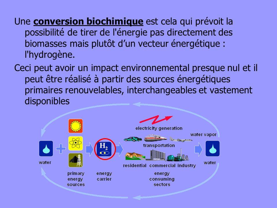 Une conversion biochimique est cela qui prévoit la possibilité de tirer de l'énergie pas directement des biomasses mais plutôt dun vecteur énergétique