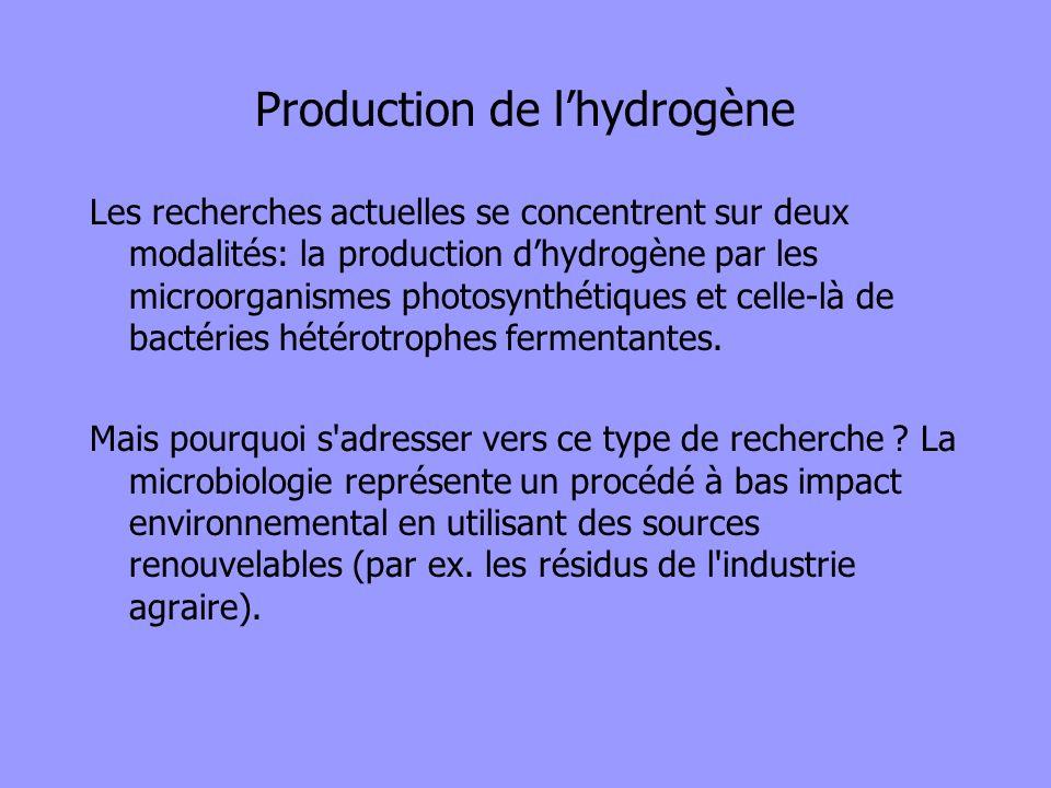 Production de lhydrogène Les recherches actuelles se concentrent sur deux modalités: la production dhydrogène par les microorganismes photosynthétique