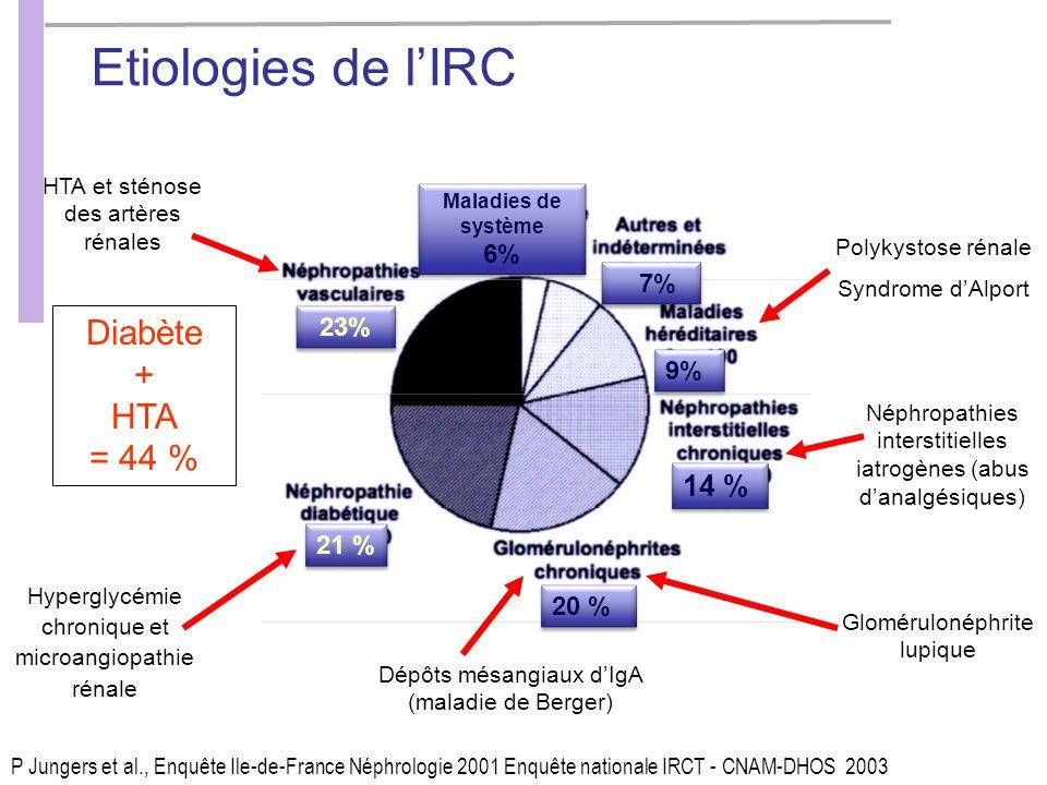 Hyperglycémie chronique et microangiopathie rénale HTA et sténose des artères rénales Dépôts mésangiaux dIgA (maladie de Berger) Glomérulonéphrite lupique Néphropathies interstitielles iatrogènes (abus danalgésiques) Polykystose rénale Syndrome dAlport P Jungers et al., Enquête Ile-de-France Néphrologie 2001 Enquête nationale IRCT - CNAM-DHOS 2003 23% Maladies de système 6% Maladies de système 6% 7% 9% 14 % 20 % 21 % Diabète + HTA = 44 % Etiologies de lIRC