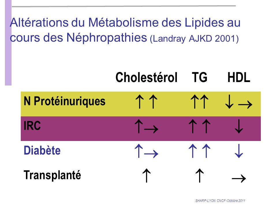 SHARP-LYON CNCF-Octobre 2011 Altérations du Métabolisme des Lipides au cours des Néphropathies (Landray AJKD 2001) CholestérolTGHDL N Protéinuriques IRC Diabète Transplanté