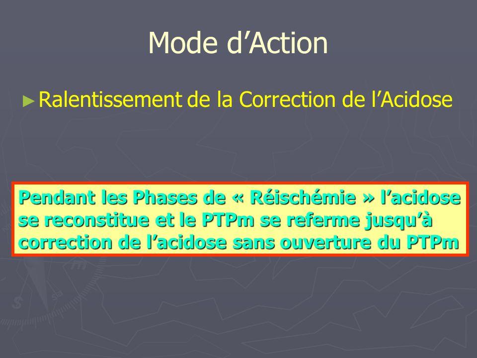 Mode dAction Ralentissement de la Correction de lAcidose Pendant les Phases de « Réischémie » lacidose se reconstitue et le PTPm se referme jusquà correction de lacidose sans ouverture du PTPm