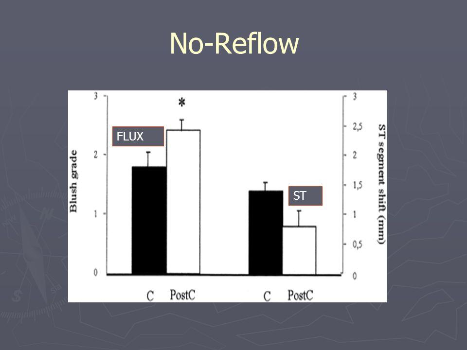 No-Reflow FLUX ST