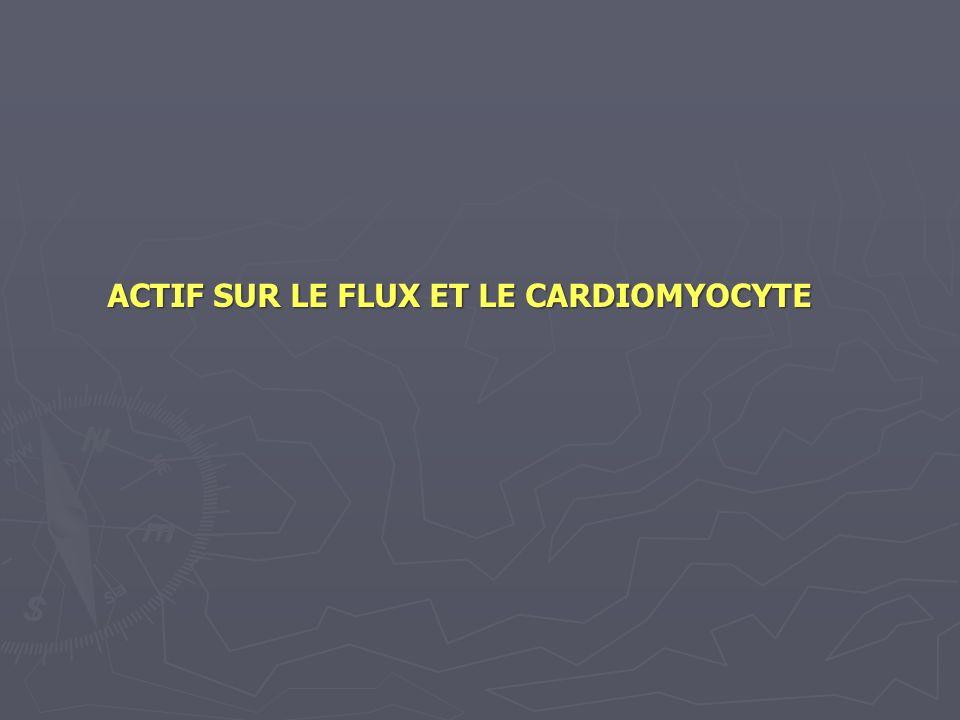 ACTIF SUR LE FLUX ET LE CARDIOMYOCYTE