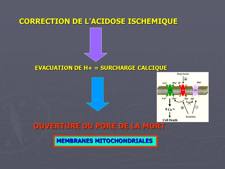 CORRECTION DE LACIDOSE ISCHEMIQUE EVACUATION DE H+ = SURCHARGE CALCIQUE OUVERTURE DU PORE DE LA MORT MEMBRANES MITOCHONDRIALES