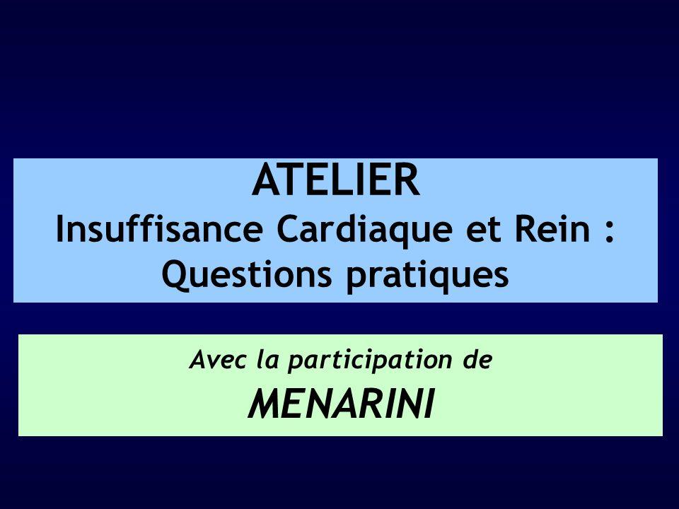 ATELIER Insuffisance Cardiaque et Rein : Questions pratiques Avec la participation de MENARINI