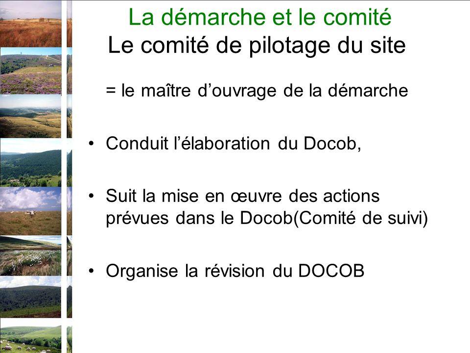 = le maître douvrage de la démarche Conduit lélaboration du Docob, Suit la mise en œuvre des actions prévues dans le Docob(Comité de suivi) Organise la révision du DOCOB La démarche et le comité Le comité de pilotage du site