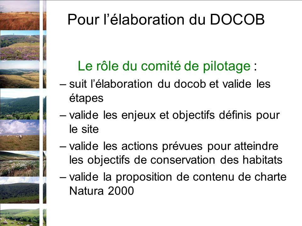 Le rôle du comité de pilotage : –suit lélaboration du docob et valide les étapes –valide les enjeux et objectifs définis pour le site –valide les actions prévues pour atteindre les objectifs de conservation des habitats –valide la proposition de contenu de charte Natura 2000 Pour lélaboration du DOCOB