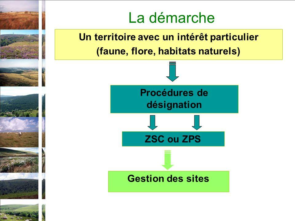 La démarche Un territoire avec un intérêt particulier (faune, flore, habitats naturels) Procédures de désignation ZSC ou ZPS Gestion des sites