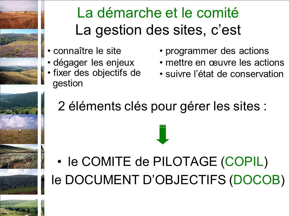 2 éléments clés pour gérer les sites : le COMITE de PILOTAGE (COPIL) le DOCUMENT DOBJECTIFS (DOCOB) connaître le site dégager les enjeux fixer des objectifs de gestion programmer des actions mettre en œuvre les actions suivre létat de conservation La démarche et le comité La gestion des sites, cest