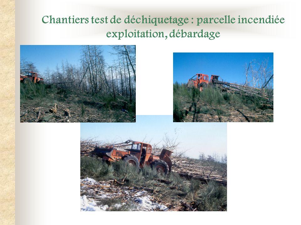Chantiers test de déchiquetage : parcelle incendiée exploitation, débardage